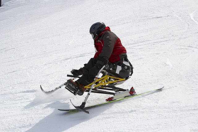 mono skier